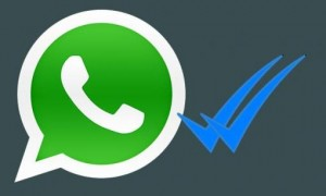 Elimine o duplo check do WhatsApp